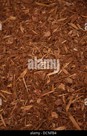 Background of Garden bark mulch - Stock Photo