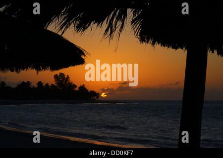 Sunset, Caribbean beach scene with beach parasols in sillohette. - Stock Photo