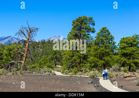 Elderly couple on the Lava Flow Trail at Sunset Crater Volcano National Monument, near Flagstaff, Arizona, USA - Stock Photo