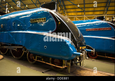Mallard and Dominion of Canada steam trains on display at National Railway Museum in the city of York North Yorkshire - Stock Photo