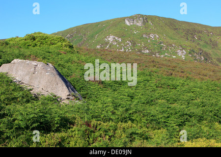 The Wicklow Mountains in Ireland - Stock Photo