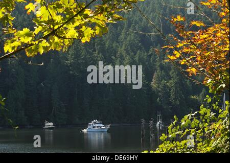 boats anchored in Tod Inlet, Vancouver Island, British Columbia, Canada - Stock Photo