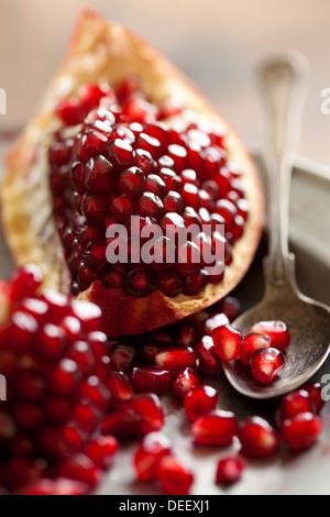 pomegranate - Stock Photo