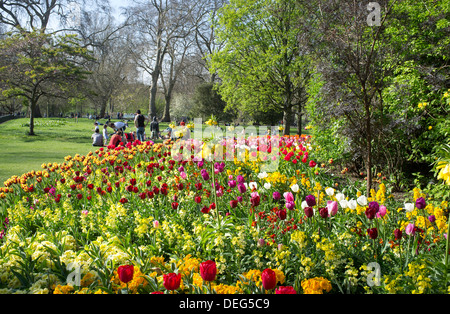 People enjoying a spring day in St. James's Park surrounded by brightly coloured tulips, London, England, United - Stock Photo