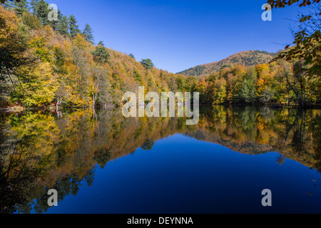 Autumn colors of the forest reflected on the pond, Yedigoller, Bolu, Turkey. - Stock Photo