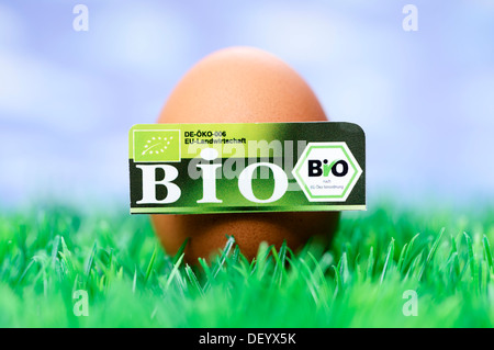 Hen's egg with organic seal, symbolic image, Germany - Stock Photo