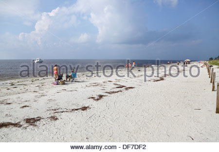 the fine beach at sanibel on the florida coast - Stock Photo
