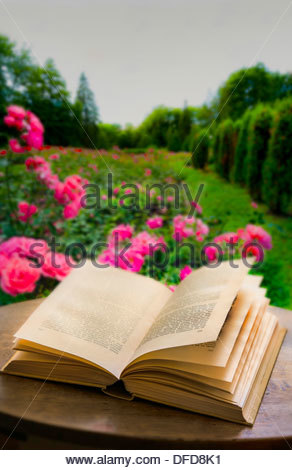 open old book on the table, garden, roses, rosary, background blurred, - Stock Photo