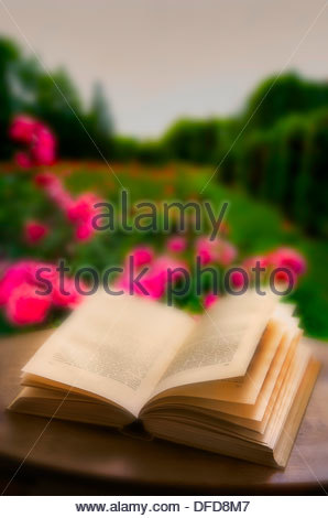 open book on the table, garden, rosary, roses, background blurred - Stock Photo