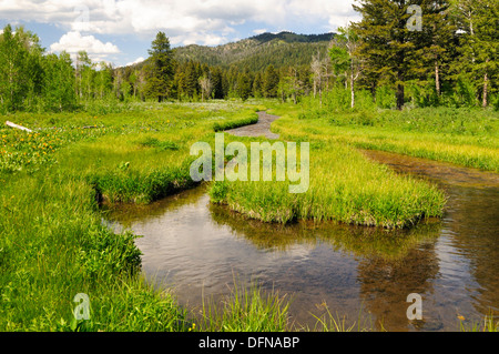 Curved creek forms loop and flows through green meadow - Stock Photo