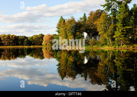 House surrounded by the autumn-coloured forest reflecting in Lake Kamaniskeg, Algonquin Provincial Park, Ontario - Stock Photo
