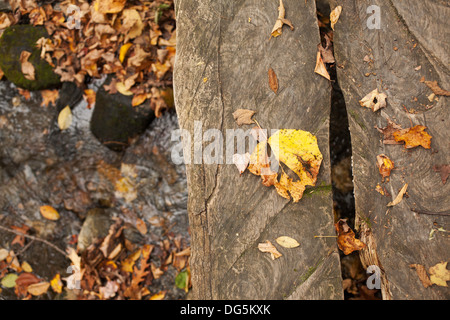 Planks of a small footbridge hang over a small stream at Mount Greylock State Park in Lanesboro Massachusetts. - Stock Photo