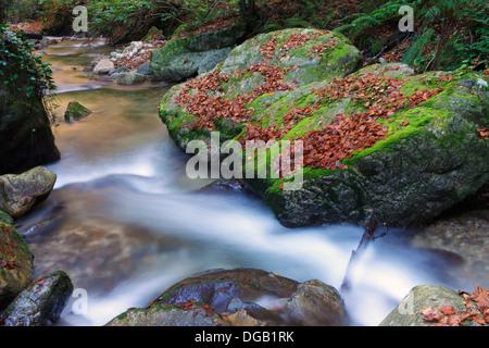 Valgrande river in autumn. Lena. Asturias. Spain - Stock Photo