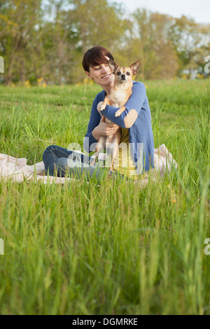 A young woman sitting in a field, on a blanket, holding a small chihuahua dog. - Stock Photo