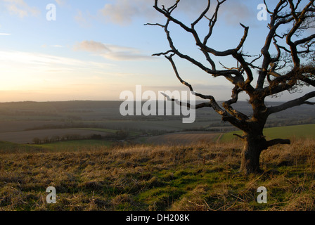 Sunset viewed from Butser Hill, Hampshire, in the South Downs National Park - Stock Photo