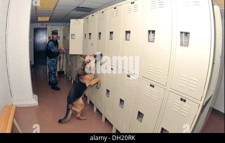 Master-at-Arms 2nd Class Justin Sosa, from Los Angeles, follows Military Working Dog Hopski in a search for hidden - Stock Photo