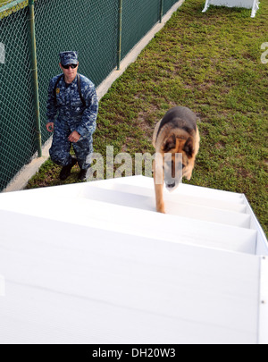 Master-at-Arms 2nd Class Justin Sosa, from Los Angeles, directs Military Working Dog Hopski through an obedience - Stock Photo