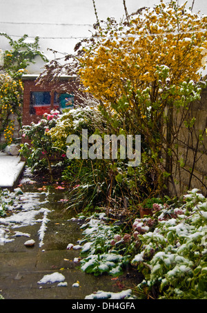 Spring snow fell on the open flowers in the garden - Stock Photo