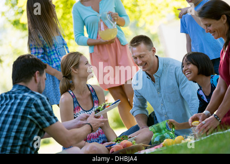 A group of adults and children sitting on the grass under the shade of a tree. A family party. - Stock Photo