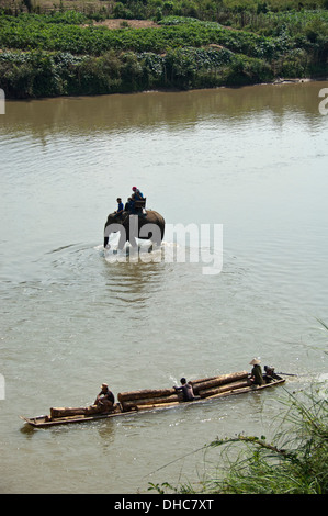Vertical view of an elephant trekking along a river with a logging boat floating passed in Laos. - Stock Photo
