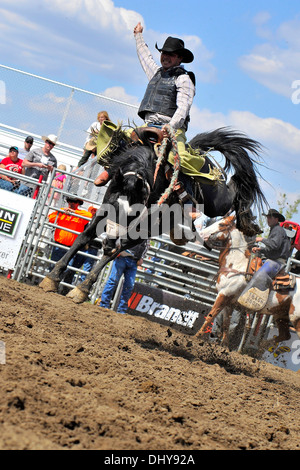 A cowboy rides a bucking bronc at a saddle bronc riding competition - Stock Photo