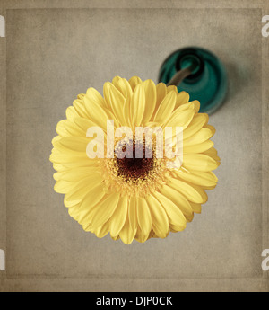 Yellow gerbera in blue vase with texture overlay - Stock Photo