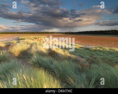 A stormy sky on a late summer evening at Holkham Bay, Norfolk, England, United Kingdom, Europe - Stock Photo