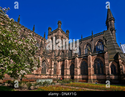 Chester Cathedral is the mother church of the Church of England Diocese of Chester, and is located in the city of - Stock Photo