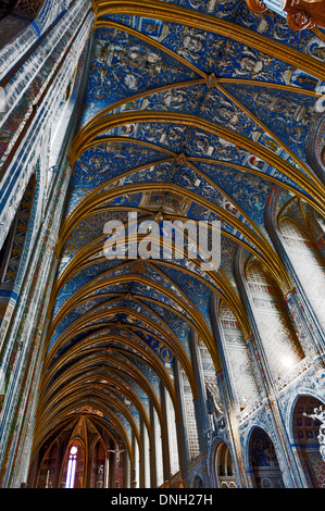 Europe, France, Tarn, Albi. Episcopal city, classified as UNESCO World Heritage. Cathedral Sainte-Cecile. - Stock Photo