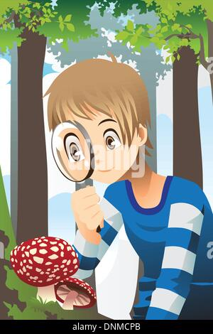 A vector illustration of a boy looking through a magnifying glass exploring wild mushroom in the forest - Stock Photo