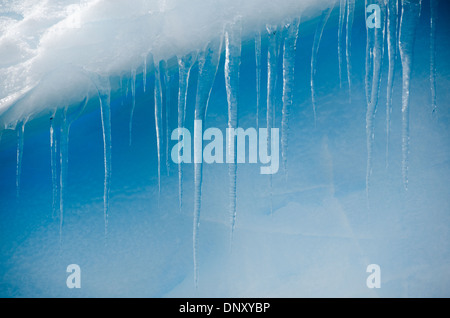 ANTARCTICA - Clear icicles hang down from a ledge of a blue Antarctic iceberg. - Stock Photo
