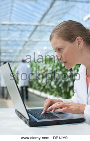 Scientist using computer in greenhouse - Stock Photo