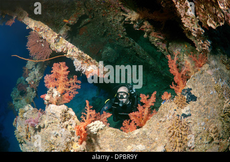 Diver looking at shipwreck 'SS Dunraven'. Red sea, Egypt, Africa - Stock Photo