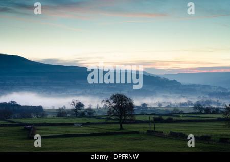 Evening mist in Wensleydale - Stock Photo