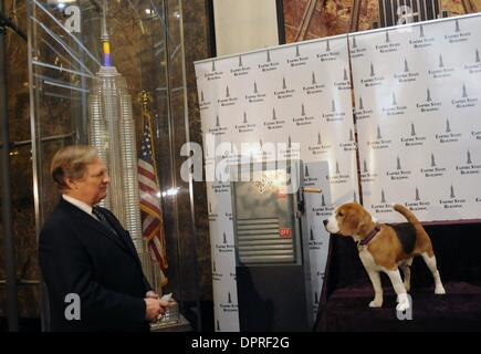 Feb 09, 2009 - Manhattan, New York, USA - In honor of the Westminster Kennel Club's 133rd annual All-Breed Dog Show, - Stock Photo