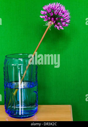 A flower in a glass of water with green back ground - Stock Photo