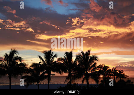 Fort Meyers, Florida, USA. 09th Aug, 2013. Silhouette of palm trees on Fort Meyers Beach at sunset. Located along - Stock Photo