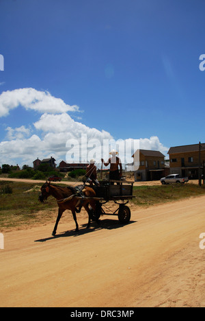 Men riding on horse cart - Stock Photo