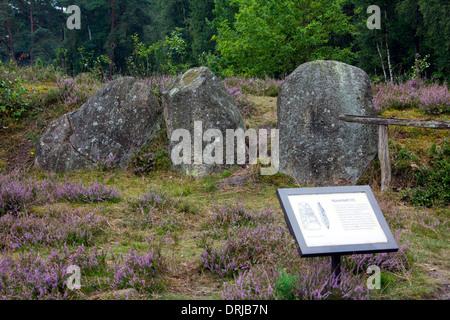 Passage grave at Oldendorfer Totenstatt, megalithic site in Oldendorf near Amelinghausen, Lueneburg Heath, Lower - Stock Photo