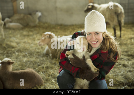 An Organic Farm in Winter in Cold Spring New York State A family working caring for the livestock A woman holding - Stock Photo