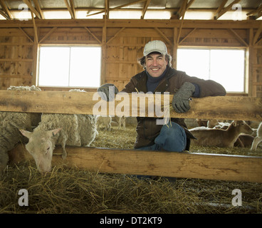 An Organic Farm in Winter in Cold Spring New York State A family working caring for the livestock Farmer and sheep - Stock Photo