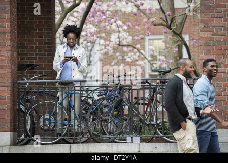 A bicycle rack with locked bicycles a woman texting and two men walking by - Stock Photo