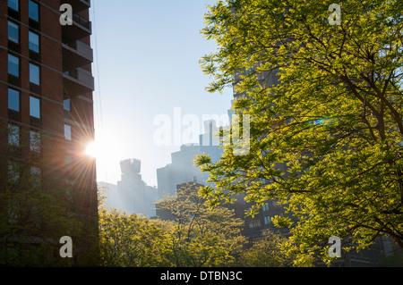 Early morning light on 42nd Street, Midtown Manhattan New York USA - Stock Photo