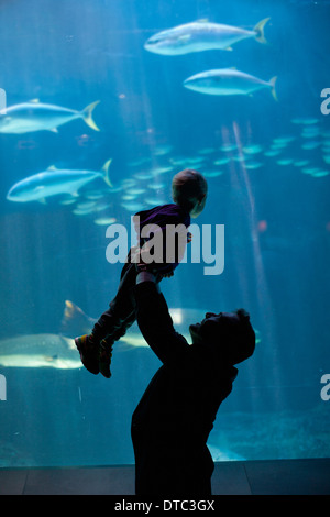 Father lifting young son to watch fish in aquarium - Stock Photo