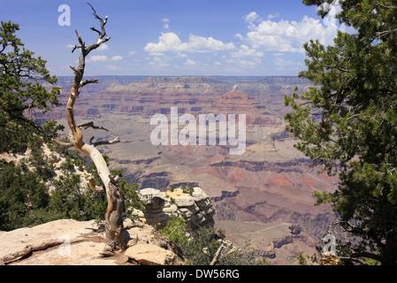 Grand Canyon, Arizona, USA - Stock Photo