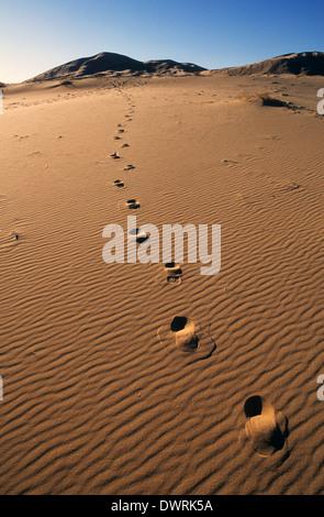 Elk248-2704v California, Mojave National Preserve, Kelso Dunes, footprints - Stock Photo