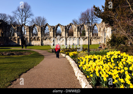 A colourful tourist appreciating Spring flowers in the Botanical Gardens, City of York, Yorkshire, England - Stock Photo