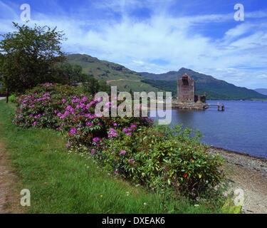 springtime view from shore of Loch Goil towards Carrick castle,Argyllshire,scotland - Stock Photo