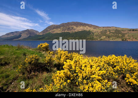 Springtime view looking west from the shore of Loch Lochy,great-Glen,Lochaber,West-Highlands. - Stock Photo