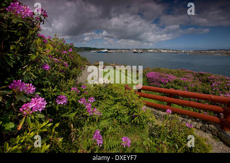 Springtime view towards Stornoway from the south shore, Isle of Lewis. - Stock Photo